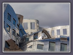 Frank Gehry Architekur in Las Vegas Downtown