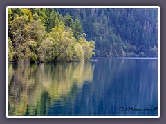 Lake Crescent Olympic NP