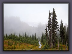 Mount Rainier im Nebel - Henry M. Jackson Memorial Visitor Center