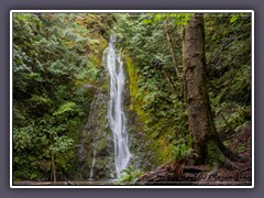 Olympic National Park - Madison Fall