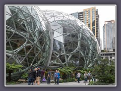 The Spheres Amazon