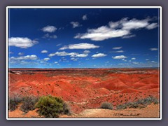 Painted Desert - Rote Bad Lands