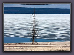 Ende Mai am Lake Yellowstone