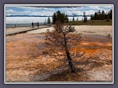 Malerisches West Thumb Geyser Basin