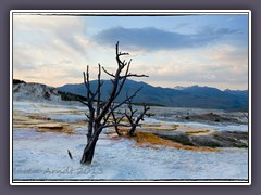 Sonnenuntergang in Mammoth Hot Springs